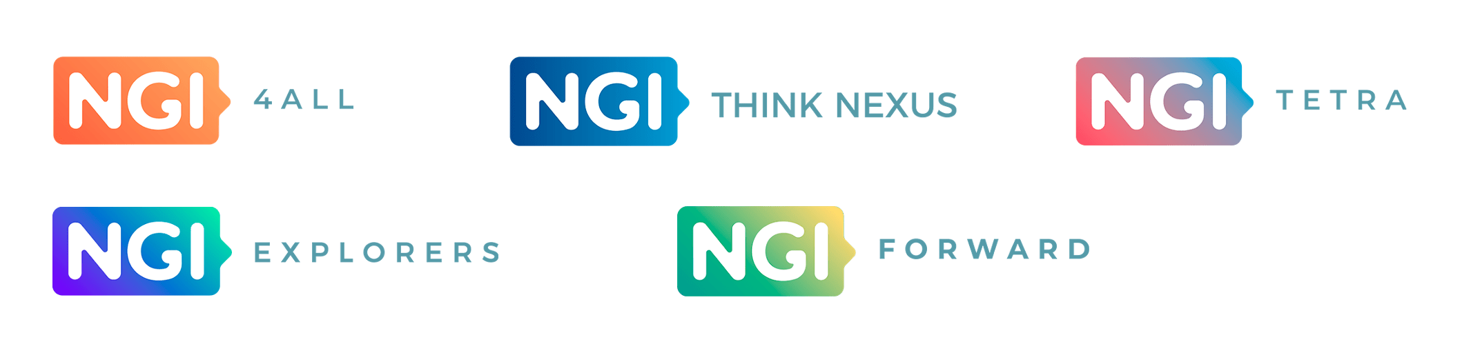 Coordination and Support Actions in NGI